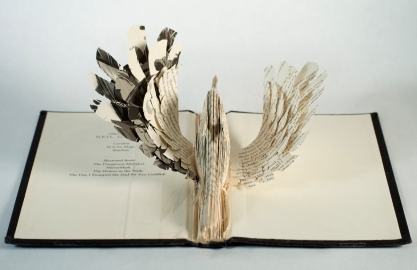 BirdBooks01