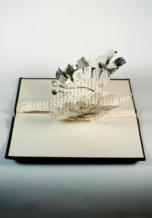 BirdBooks03