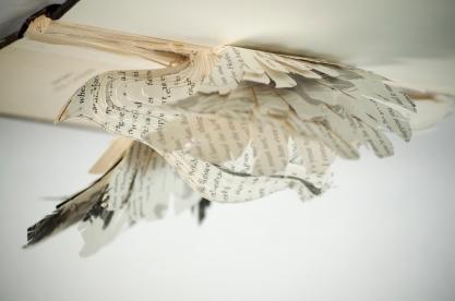 BirdBooks06