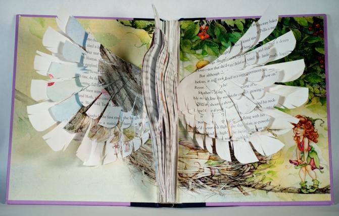 BirdBooks12