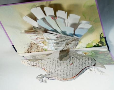 BirdBooks19