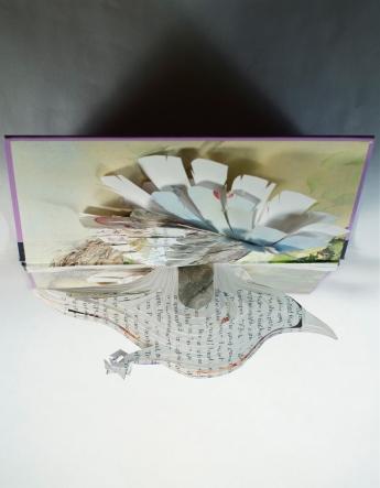 BirdBooks21