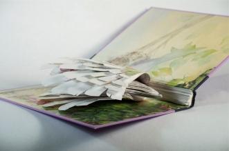 BirdBooks29