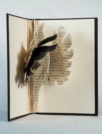 BirdBooks34