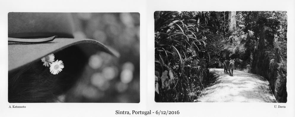 sintra-portugal01